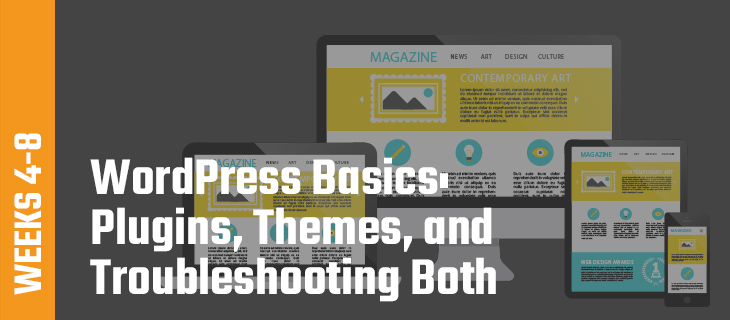 Week 4-8: WordPress Basics: Plugins, Themes, and Troubleshooting Both